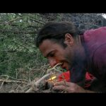 Dung to the Rescue | Primal Survivor