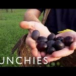 Exploring Sicily's Rich Food Culture: Being Frank – Episode 2 (Trailer)