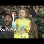 Little Girl Loses Her Mind Over Cotton Candy