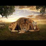 Friendship – Speed art (#Photoshop) | CreativeStation